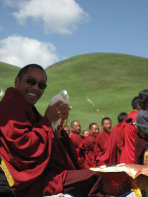 Rinpoche with Dove